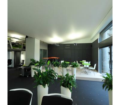 Натяжной потолок 36 м² Solnechnogorsk