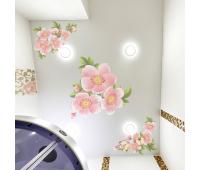 Матовый натяжной потолок с фотопечатью 1 м² + монтаж