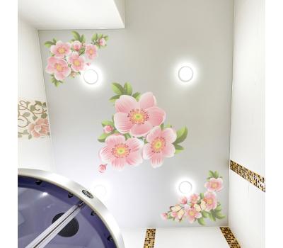 Матовый натяжной потолок с фотопечатью 1 м² + монтаж Solnechnogorsk